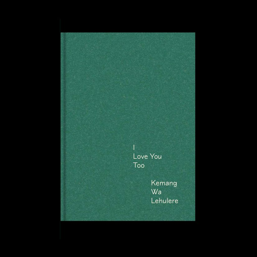 The cover of the book I Love You Too
