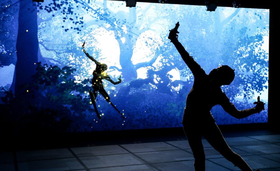 Silhouette in front of a large screen projection