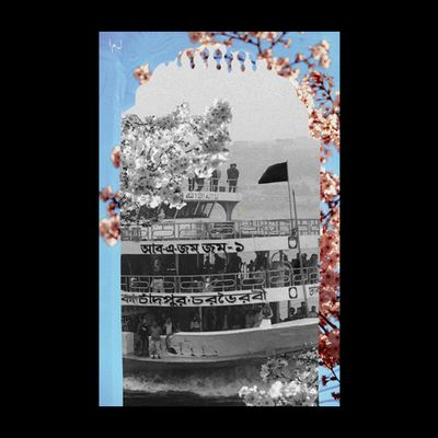 A black-and-white ship with 4 open decks, with Bengali writing on the side and a black flag waving from one of the decks. There are some black-and-white cherry blossoms partially covering the ship. Framing the black-and-white image are pink cherry blossoms and a blue sky. In the top left-hand corner are the letters: ل م أ